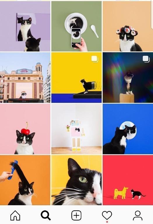 Советы, как оформить профиль в Инстаграм стильно и эффектно